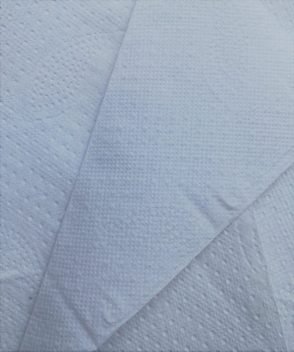 Handtuchpapier 2 lagig